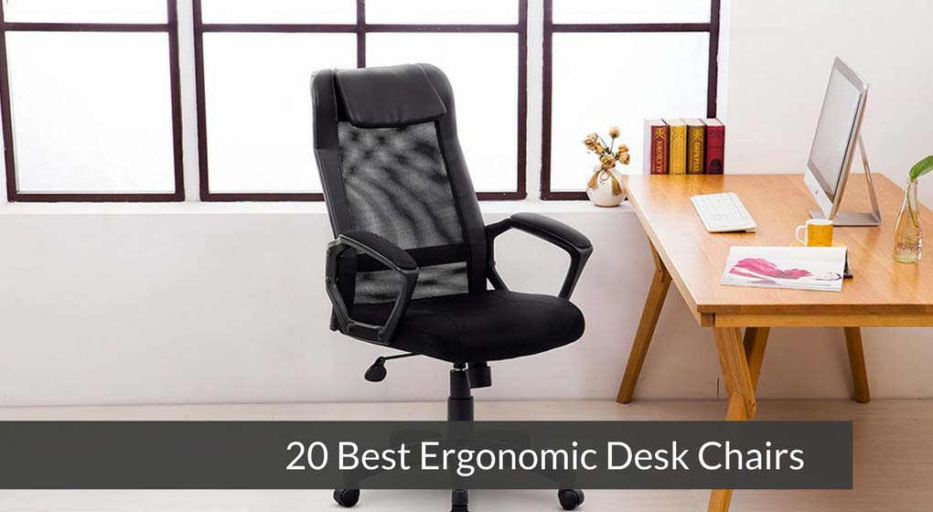 20 Best Ergonomic Desk Chairs