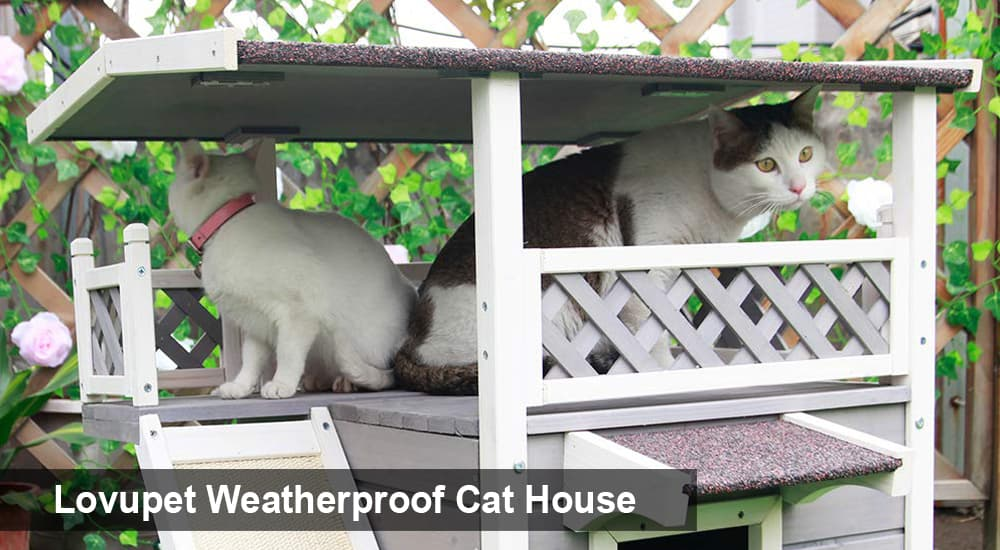 Lovupet Weatherproof Cat House